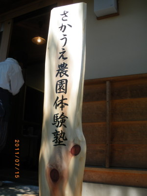 20117